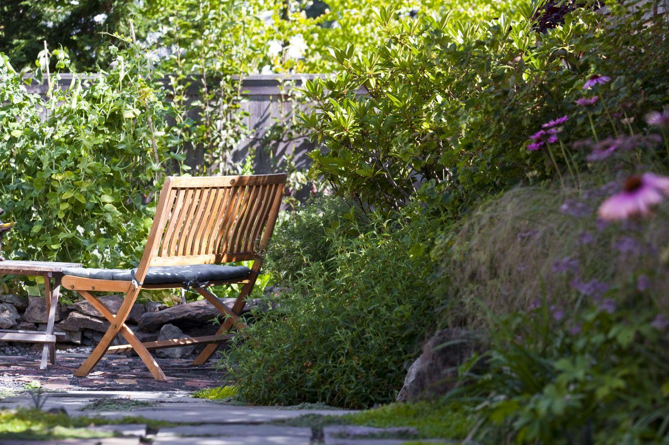 Seward Park bench