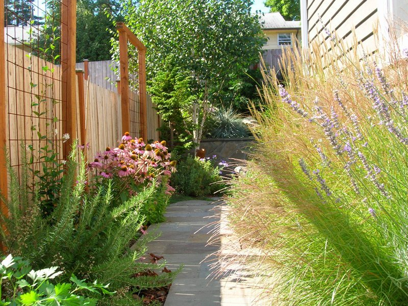 Solutions for a Small (and Soggy) Yard - Spirit Garden Design