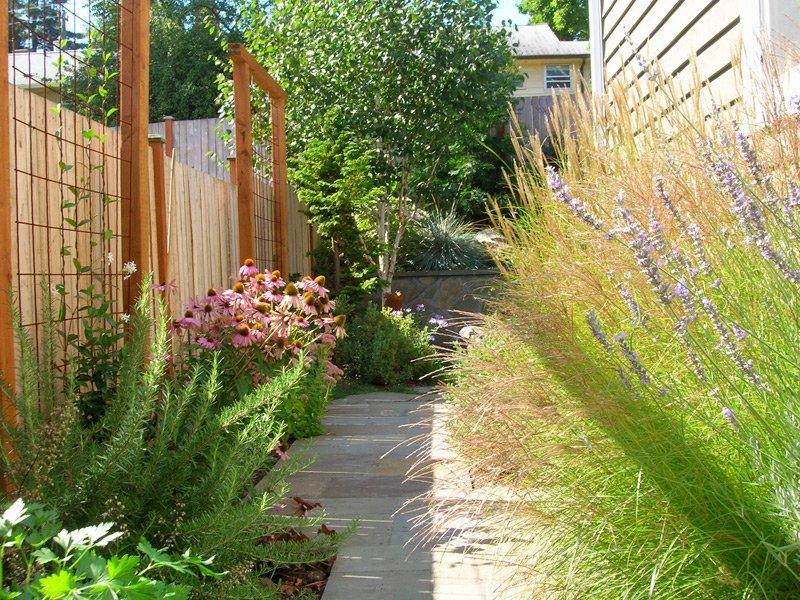 Small garden design after