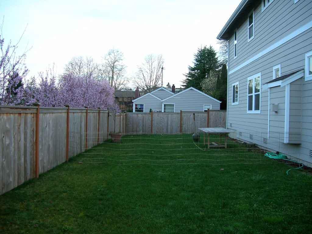Hoeller Back yard - Before